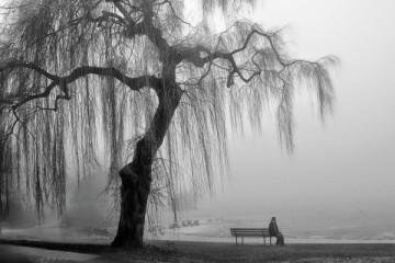 arte_di_conoscere_se_stessi_solitudine_Schopenhauer
